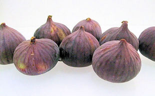 figs (Turkish)