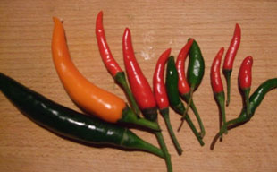 Thai chillies, mixed