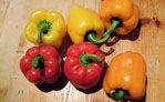 peppers (bell)